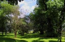 Park_Przyparkowa 13_Bronisze_6