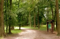 park ołatrzew 8