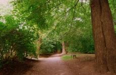 park ołtarzew 2