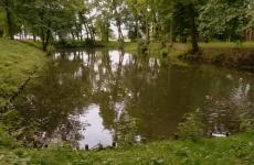 park ołtarzew 9