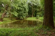 park oltarzew 13